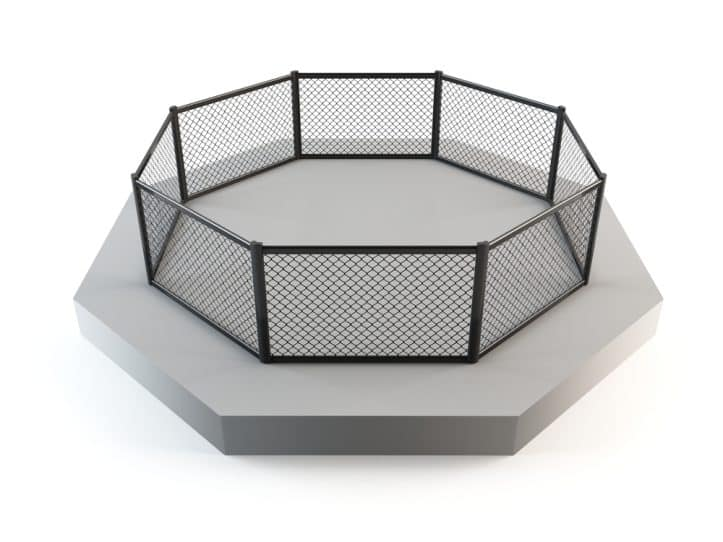 Fairfax criminal defendants and prosecutors- Image of octagonal ring
