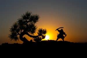 Pursuing victory after hiring Fairfax criminal lawyer Jon Katz - Image of warrior