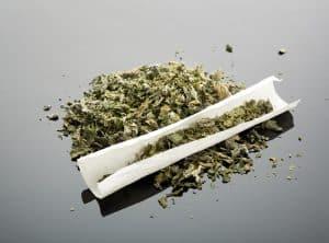 Green tongue and marijuana - image of loose cannabis