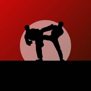 Courtroom battling with the glee of a martial artist in the snow - Virginia lawyer